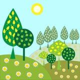 Landschap met bomen en zonneschijnmadeliefjes Stock Afbeeldingen