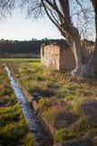 Landschap met boom en rivier stock afbeeldingen