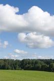 Landschap met bos stock foto's
