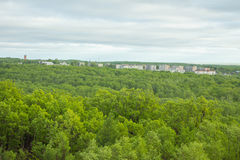 Landschap met bos en een kleine stad Stock Foto