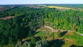 Landschap met bos stock footage