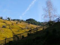 Landschap met de bomen en de omheining van het berghuis Royalty-vrije Stock Afbeeldingen