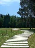 Landschap met de raadsweg van S royalty-vrije stock foto's