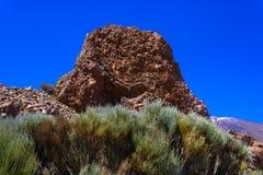 Landschap met de rotsvormingen en vulkaan in het Nationale Park van Teide, flora op vulkaan Tenerife, Canarische Eilanden, Spanje stock foto