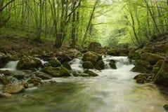 Landschap met een bergrivier in de Krim Stock Foto