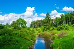 Landschap met een rivier Stock Afbeeldingen