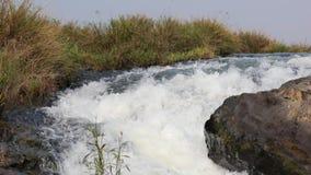 Landschap met een stroom en een krachtig water stock footage
