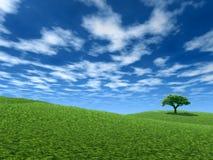 Landschap met eenzame boom royalty-vrije illustratie