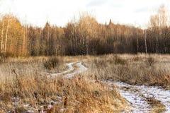 Landschap met gebied Royalty-vrije Stock Foto's