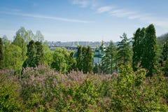 Landschap met groen gras, blauwe hemel, kerk Stock Afbeeldingen