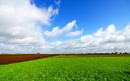 Landschap met groen grasgebied en blauwe hemel stock foto's