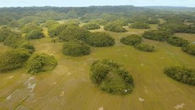Landschap met groene heuvels Bohol, Filippijnen stock video