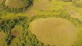 Landschap met groene heuvels Bohol, Filippijnen stock footage