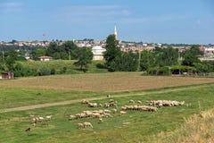 Landschap met groene weiden op de rand van stad van Edirne, Oost-Thrace, Turkije stock afbeeldingen