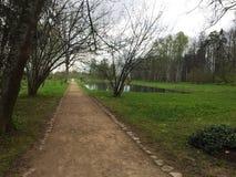 Landschap met het de herfstbos royalty-vrije stock afbeelding
