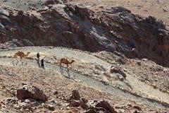 Landschap met kamelen en mensen royalty-vrije stock foto's