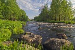 Landschap met kleine stroomversnelling Royalty-vrije Stock Foto