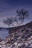 Landschap met lei Royalty-vrije Stock Foto's