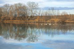 Landschap met meer in de herfst Royalty-vrije Stock Fotografie