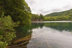 Landschap met meer in plidvice van Kroatië Stock Foto