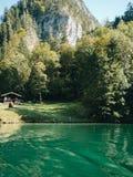 Landschap met meer tegen bergen stock afbeelding