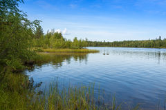 Landschap met meer in zonnige dag, Finland Stock Foto's