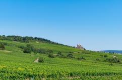 Landschap met mening bij wijngaarden en de Benedictineabdij van St Hildegard Royalty-vrije Stock Foto