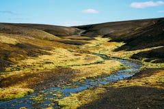 Landschap met mos in IJsland Bergtoerisme en vulkanisch gebied Stock Foto's