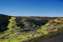 Landschap met mos in IJsland Het bergtoerisme en vulkanisch is Stock Foto's