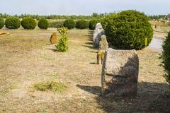 Landschap met oud Scythian-steenbeeldhouwwerk, bloeiende weide Stock Foto