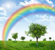 Landschap met regenboog Stock Afbeelding