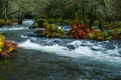 Landschap met rivier Stock Afbeelding