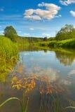 Landschap met rivier Stock Foto