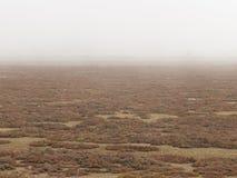 Landschap met rood en geel gras en dikke mist royalty-vrije stock afbeelding