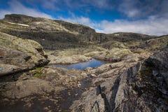 Landschap met rotsen van Hardangervidda dichtbij Odda stock afbeeldingen