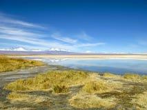 Landschap met snow-covered bergen in de Atacama-Woestijn Chili stock foto