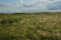 Landschap met steppe en wolken Royalty-vrije Stock Afbeelding