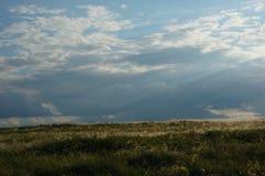 Landschap met steppe en wolken Royalty-vrije Stock Foto