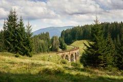 Landschap met trainebrug van het spoorwegviaduct in de Oekraïne stock foto