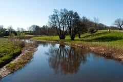 Landschap met treereflection in het water Stock Afbeelding