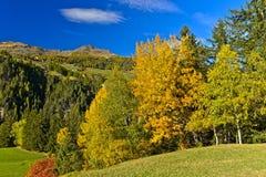 Landschap met vergankelijk bos in de kleuren van het de herfstblad Stock Afbeeldingen