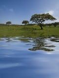 Landschap met waterbezinning royalty-vrije stock fotografie