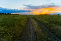 Landschap met weg op zonsondergang Stock Fotografie