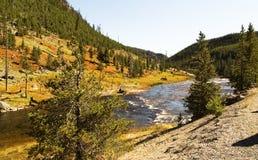 Landschap met Yellowstone-rivier bij het nationale park van Yellowstone, WY, de V.S. Royalty-vrije Stock Afbeelding