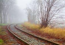 Landschap in Mist Royalty-vrije Stock Afbeelding