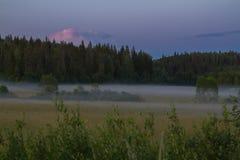 Landschap in mistige nacht in de zomer Stock Afbeeldingen