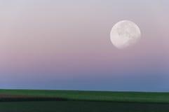 Landschap Mooie grote maan over het groene gebied Royalty-vrije Stock Afbeeldingen