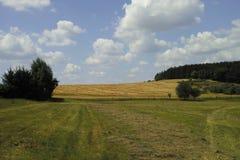 Landschap na de oogst royalty-vrije stock foto's