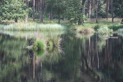 Landschap in Nederlands Limburg Stock Foto