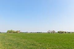 Landschap Nederlandse Achterhoek Stock Fotografie